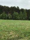 30 соток ЛПХ рядом с сосновым лесом - Фото 3