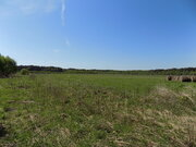 Участок ЛПХ 5,47 га у реки Волга, дер. Алексино, Калязинский р-н - Фото 3