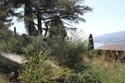 Земельный участок в парковой зоне