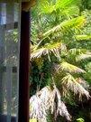 800 000 Руб., 1/2 часть 2этажного кирпичного дома, Продажа домов и коттеджей Сухум, Абхазия, ID объекта - 501198556 - Фото 10