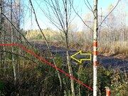 Участок 14 сот на лесной поляне, Таширово, ул. Лесная - Фото 2