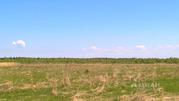 Участок в Ярославская область, Брейтовский район, с. Прозорово (6.0 . - Фото 2