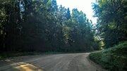 Чудесный земельный участок 2 Га. в лесу под строительство - Фото 3