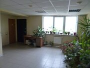 Офис 33 кв.м. в центре - Фото 2