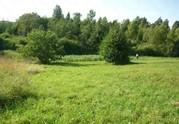 Продажа земельного участка в Валдайском районе, деревня Костково - Фото 3