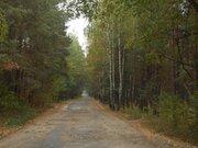 Предлагаю к продажи шикарный участок под коттеджный городок, Земельные участки в Украине, ID объекта - 201049347 - Фото 7
