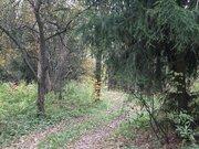 Участок 4 или 8 соток, у леса, на берегу реки г. Климовск, СНТ Дубрава - Фото 1