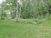 Участок 10 соток в д.Мытники в 1 км от Озернинского вдх - Фото 3