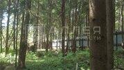 Лесной участок 15 сот. - Фото 4