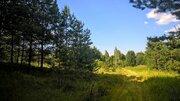 Чудесный земельный участок 2 Га. в лесу под строительство - Фото 1