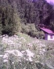 Земельные участки в Томском районе