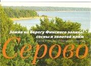 Продам земельный участок. Серово пос, Приморское шос. - Фото 2