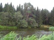 Участок с выходом в р.Волга, д.Нутромо 128 сот, газ, эл-во - Фото 2