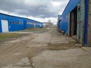 Сдается холодный склад площадью 504 кв, Аренда склада в Некрасовском, ID объекта - 900214636 - Фото 39