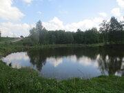 Продаётся участок 30 сот. в д. Семёновское (от г. Пущино 5км.) - Фото 2