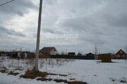 Участок 8 соток д. Проскурниково, СНТ Рябина - Фото 5