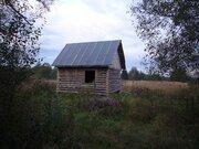 20 соток в д.Парфеново, Клепиковского района, Рязанской области. - Фото 2