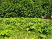 Ленинградское ш. 60 км от МКАД, Нагорное, Участок 15 сот. - Фото 4