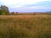 Земельный участок 25 соток в д. Беляево Чеховского р-на - Фото 5