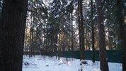 Лесной участок в Кратово - Фото 2