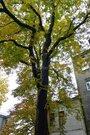 Аренда квартиры, Улица Даугавпилс, Аренда квартир Рига, Латвия, ID объекта - 322343697 - Фото 11