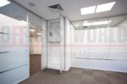 Офис, 206 кв.м. - Фото 4