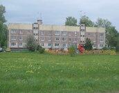 Предлагаю участок 30 соток в деревне Семёновское (г. Пущино 5км.), - Фото 3