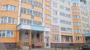 Помещение с отдельным входом, лифт,1 этаж,25-этажный дом, Борисовка, Аренда помещений свободного назначения в Мытищах, ID объекта - 900196834 - Фото 7