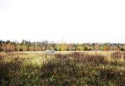 11 соток в с. Жёлтые пески рядом с лесом - Фото 1