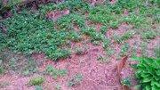 2 100 000 Руб., 35 кв.м, свет, вода, солничный участок, Дачи в Сочи, ID объекта - 503115168 - Фото 5