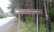 """Продам земельный участок СНТ """"Паломиес"""" - Фото 1"""