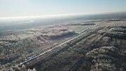 Участок в Калужская область, Износковский район, с. Износки (151.0 . - Фото 2