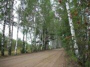 Продаю земельный участок 16.5 соток в д. Покровское на берегу озера. - Фото 2