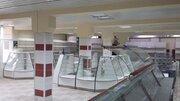 Аренда торгового помещения, Кемерово, Ул. Ворошилова - Фото 3