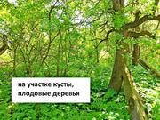 Продажа участка, м. Ломоносовская, Сдт Красный Октябрь Тополиная аллея