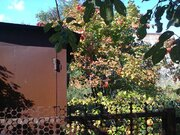 380 000 Руб., Продам дачу в Мурмино недорого, Дачи Мурмино, Рязанский район, ID объекта - 502399584 - Фото 9