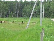 Продается зем. участок сельхозназначения вблизи д.Липитино Озерского р - Фото 5