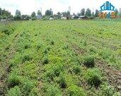 Продаётся участок 27 соток ЛПХ в деревне Тимофеево - Фото 3