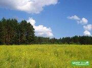 Участок у леса и реки на краю деревни,200 соток, ИЖС. - Фото 3