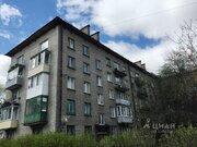 2-к кв. Санкт-Петербург Новоизмайловский просп, 30к3 (55.6 м)