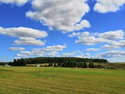 Продаётся земельный участок 10 сот. с лесными деревьями -35 км от МКАД - Фото 4