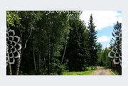 Продам участок, Киевское шоссе, 20 км от МКАД - Фото 3
