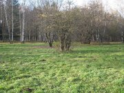Земельный участок 40 соток в поселке Победа Мытищинского района - Фото 5