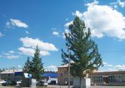 Продается земельный участок в коттеджном поселке «Есенино» - Фото 2