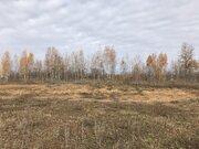 Продается земельный участок 45 соток в Чигирях - Фото 1