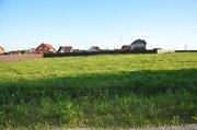 Продается земельный участок 45 соток, эл-во, газ, прописка, с-з Победа - Фото 4
