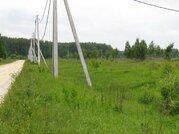 Продается зем. участок сельхозназначения вблизи д.Липитино Озерского р - Фото 2
