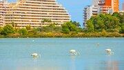 30 €, Трехкомнатная квартира в курортном городе у моря, бассейн круглый год, Квартиры посуточно Торревьеха, Испания, ID объекта - 308930115 - Фото 26