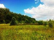 Участок на берегу реки Руза, 60 соток под ИЖС, д. Старотеряево - Фото 4