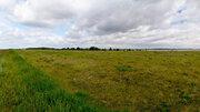 Земля с/х назначения в Октябрьском районе, Кочердык, оз. Соленое - Фото 2